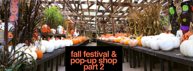 Fall Festival and Pop-Up Shop Part 2